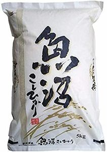 5kg×1袋 【精米】新潟県 魚沼産 コシヒカリ 令和元年産 白米 米 コメ (5㎏×1袋)