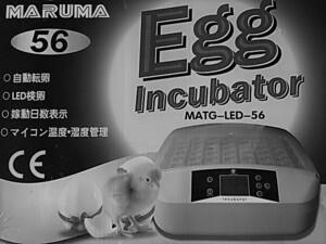 孵卵器 PSE認証 ふ卵器 孵化器 インキュベーター 最大56個  有精卵を全自動で孵化させる器械です 鶏 うずら 烏骨鶏 がちょうなど