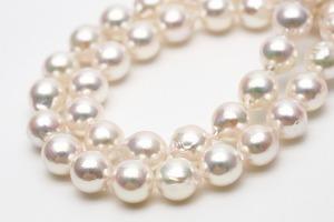 アコヤ真珠パールロングネックレス 8.5-9.0mm ホワイトピンクカラー