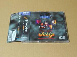チューリップ「Live Act Tulip '97 Tulip Magical History Tour」の中古DVD 財津和夫 2000年発売 帯付き