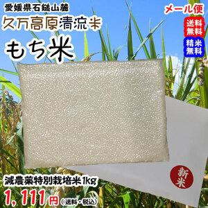 愛媛 石鎚山麓 久万高原 清流米 減農薬 特別栽培米 令和3年産 ( もち米 ) 白米1kg 真空パック 高原清流が育んだお米 送料無料 宇和海の幸