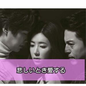 悲しい時愛する 韓国ドラマ Blu-ray 全話