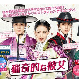 猟奇的な彼女 韓国ドラマ Blu-ray 全話
