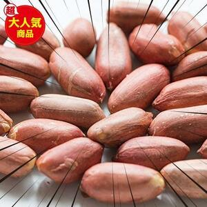 Eight Shop ピーナッツ 皮付き 素焼き 落花生 500g 塩味 チャック付き袋