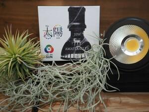 ◆アマテラス LED10W /植物育成ライト チランジア アガベ ビカクシダ-21