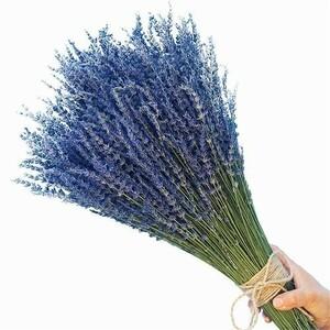 束でお届け!ラベンダーのドライフラワー 100g インテリア 装飾 花 ブーケ 自然乾燥 アロマ
