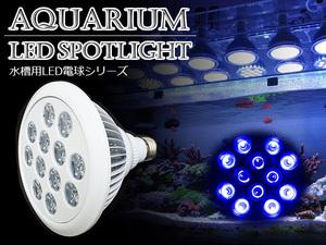 LED 電球 スポットライト 24W(2W×12)青8紫外線4灯 水槽照明 E26 LEDスポットライト 電気 水草 サンゴ 熱帯魚 観賞魚 植物育成