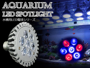 LED 電球 スポットライト 7W 青4赤3 水槽 照明 E26 観賞育成用 LEDスポットライト 電気 水草 サンゴ 熱帯魚 観賞魚 植物育成