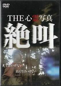◆新品DVD★『THE 心霊写真 絶叫』LPJD-7008 幽霊 ホラー★1円