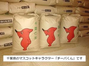 ★☆農家より令和2年千葉県産コシヒカリ30kg【在庫処分!】1円スタート!☆★