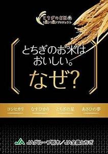 【期間限定】5kg 【精米】栃木県産 JAしおのや 白米 なすひかり 5kg 令和元年産5W8T