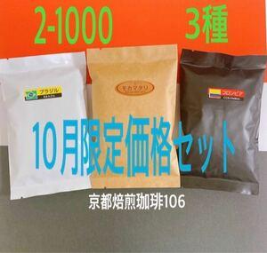 《2-1000》10月限定価格 飲み比べ 自家焙煎 珈琲豆 3種セット(各100g)