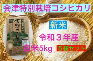 新米 送料無料 令和3年産 特別栽培米・会津コシヒカリ 白米 5kg×5袋 計25kg