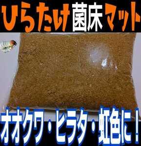 瓶に詰めるだけ!ひらたけ菌床クワガタマット!クヌギ100%原料!オオクワ、虹色、ヒラタ、ノコギリなど菌糸系クワガタ全般に!良く食べる5L