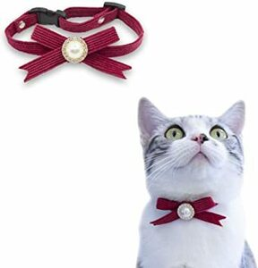 赤 S 猫 首輪 コーデュロイ 布 模造真珠 鈴なし セーフティバックル 可愛い 調整可能 軽量 ペット首輪 赤
