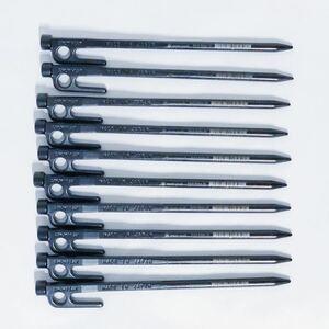スノーピーク ペグ 20cm 10本セット ソリッドステーク20 R-102