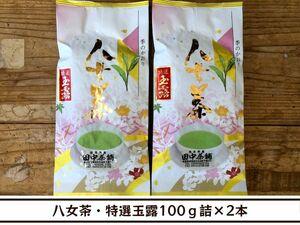 【送料無料】八女茶・特選玉露100g詰×2本