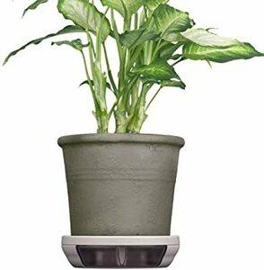 フロスティグレイ ポットキーパー 鉢 鉢皿 観葉植物の清潔グッズ お部屋きれいにお手入れ簡単ラクに フロスティグレイ