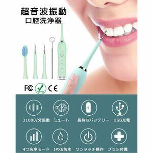 電動歯ブラシ 口腔洗浄器 歯石取り 超音波 電気歯クリーナー ブラック