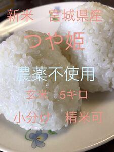 新米 令和3年産 宮城県産 つや姫 玄米5Kg 栽培期間中農薬不使用 精米可