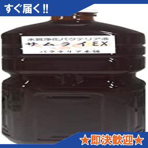 新品【バクテリア本舗】 高濃度バクテリア液サムライEX (メダカ 錦鯉 金魚 熱帯魚 グッピー シュリンプ 海水魚 DGAQ