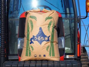 新米 農家直送 令和3年産 北海道 安田農場産 一等米 ななつぼし 25kg精米