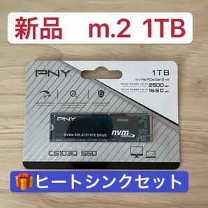 【新品未開封】PNY SSD 1TB m.2 nvme PCIE 1000GB cs1030 2280 おまけ付