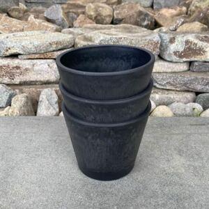 プラ鉢 黒 3個 塊根植物 コーデックス