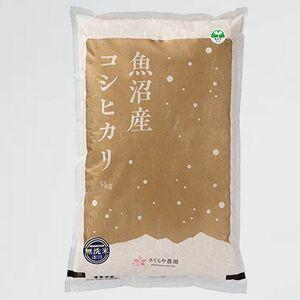 新品 好評 令和3年 新米 F-NL 低農薬栽培米 さくらや農園 魚沼産コシヒカリ 無洗米5kg 魚沼市ブランド推奨米