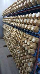 【中古】菌糸ボトル950cc 15本②