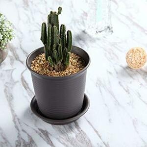 新品NO.4 Medium T4U 12CM プラスチック製 植木鉢 プランター 多肉植物 サボテン鉢 受け皿付き RAPR