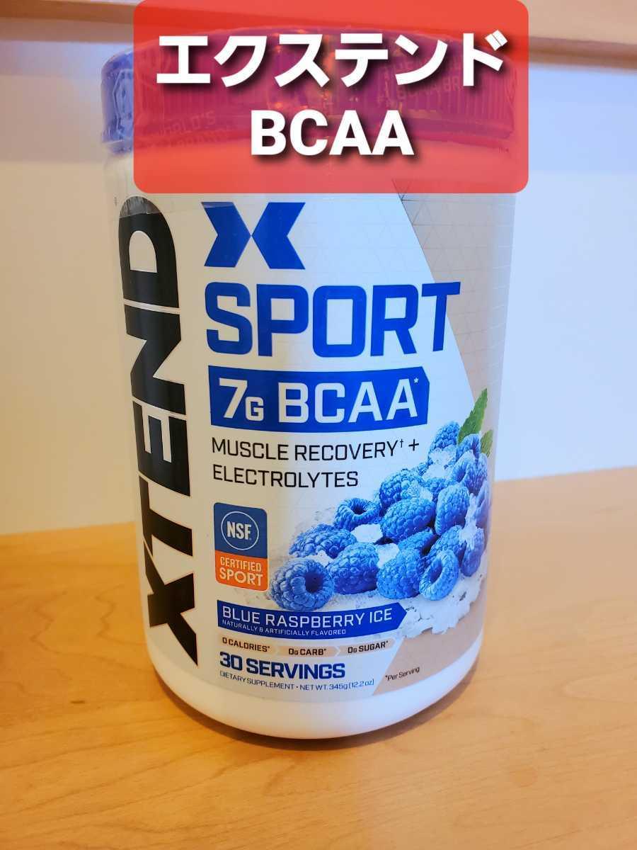 【送料無料・国内発送】XTEND エクステンド BCAA ブルーラズベリーアイス 筋トレ トレーニング スタミナ 持久力 スポーツ お試し