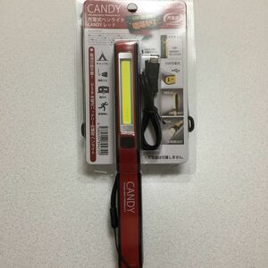 【最終値下げ】充電式LEDペンライト(レッド)