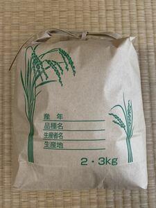 令和3年 兵庫県 淡路島産 新米 キヌヒカリ 玄米3kg[精米無料] 淡路 淡路島 1