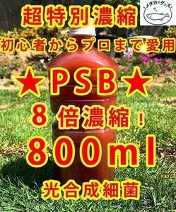 コスパ優秀★PSB 光合成細菌 超8倍濃縮800ml送料無料★バクテリアメダカめだからんちゅう金魚熱帯魚ミジンコゾウリムシミドリムシ