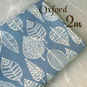 SALE 新色 葉っぱの森 透かしリーフ柄 北欧風 くすみブルー 110×200