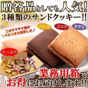 【複数購入推奨】サクサク食感と甘さ控えめクリームがたまらない!!【お徳用】クリームサンドクッキー3種36個(各味12枚)≪常温便≫