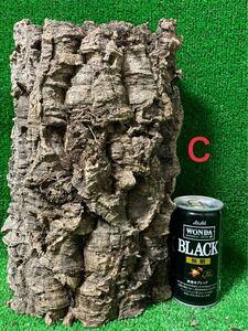 【全品 送料無料】コルク樹皮 キャノン型 色んなコルク出品中 ビカクシダ エアプランツ レイアウト 隠れ家 テラリウム 木 エアープランツ