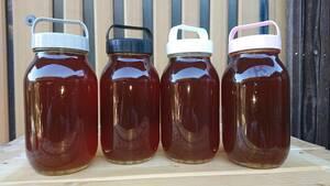 日本蜜蜂 百華蜜・蜂蜜 正味1200g以上⑥