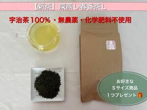 「新茶」深蒸し春番茶Lサイズ 宇治茶100% 無農薬・化学肥料不使用 2021年産