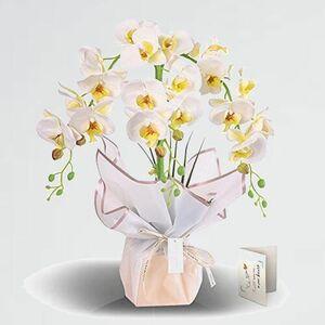 未使用 新品 蘭 Fauhal 5-BC 当選祝い 長寿のお祝い 造花 胡蝶蘭 CT触媒加工 鉢植 母の日ギフト 三本立てギフトきれいラッピング