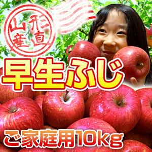 ★山形のりんごはうまいずね~★ 山形県産 早生ふじりんご 10kgバラ詰め【ご家庭用・訳あり】