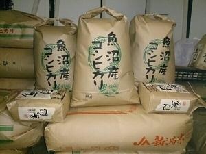南魚沼産コシヒカリ しおざわ西山地区 令和3年産 玄米20kg 送料無料