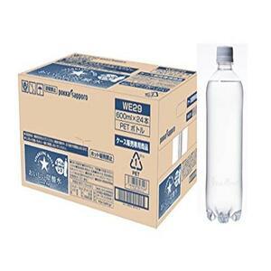 【在庫限りです】 サッポロ おいしい炭酸水 ラベルレス 600ml ×24本
