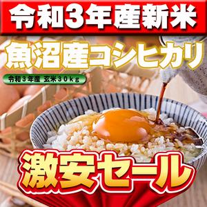 【令和3年産新米】新潟県魚沼産コシヒカリ玄米30kg(精米無料)味・ツヤ・香り全て最高ランクです、