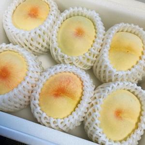 フリー画像 1円即決 食べ物 素材 送料無料  白桃