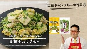 送料無料メール便 豆苗チャンプルーの素 20g 2人前 鶏がら醤油味 ガーリックの旨み 日本食研/8228x1袋