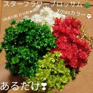 ハーバリウムボールペン レジン アクセサリー 花材セット 気まぐれ素材 Xmas