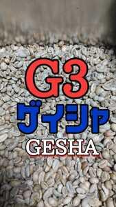 エチオピア ゲイシャG3コーヒー生豆900g焙煎もハンドピックもしておりません!購入者様でお願い致します!
