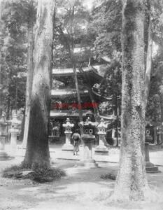 複製復刻 絵葉書/古写真 東京上野 旧寛永寺五重塔 明治期